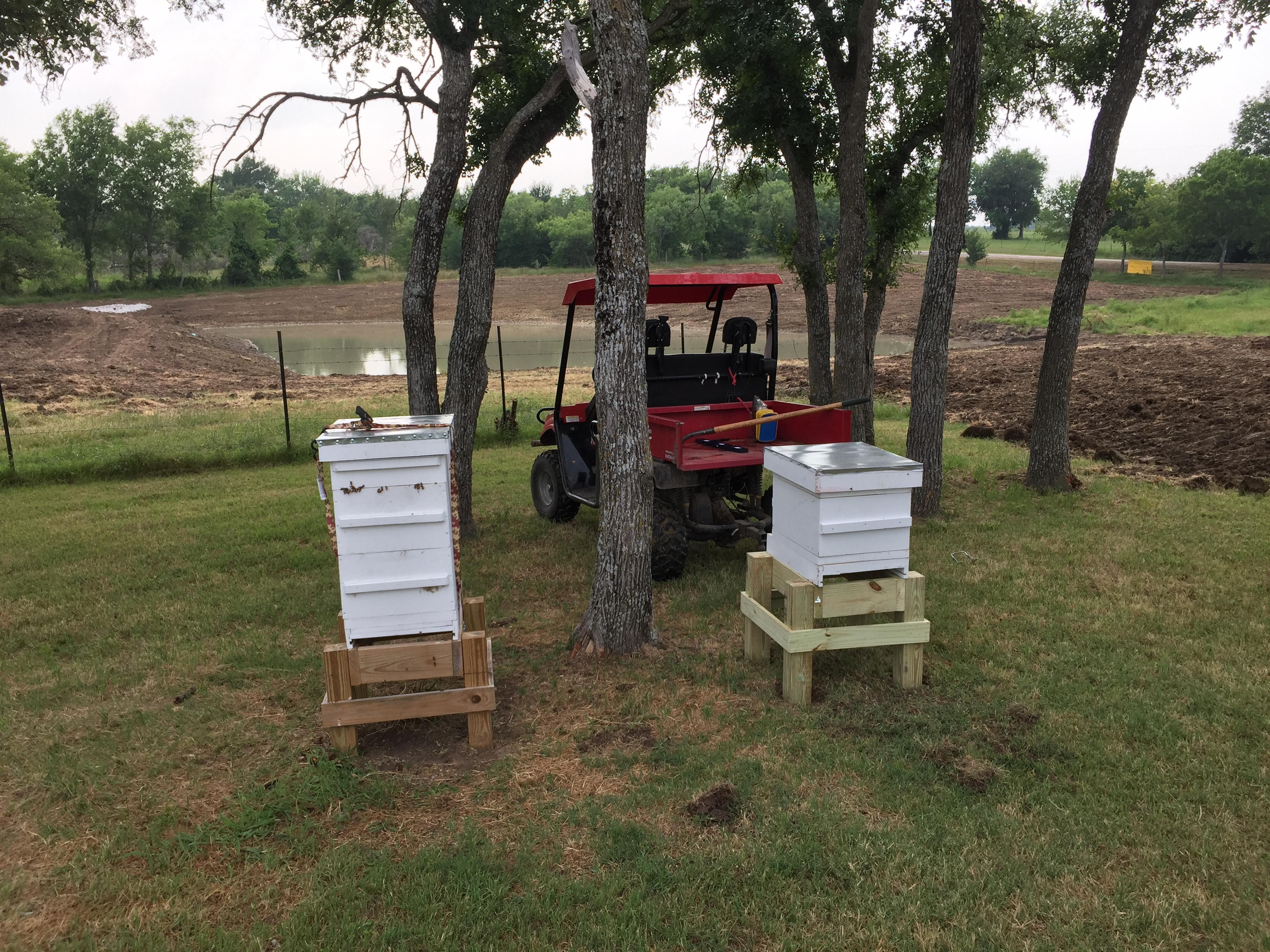 Beehives Out